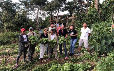 Empowering Mindanaoan farmers through e-commerce